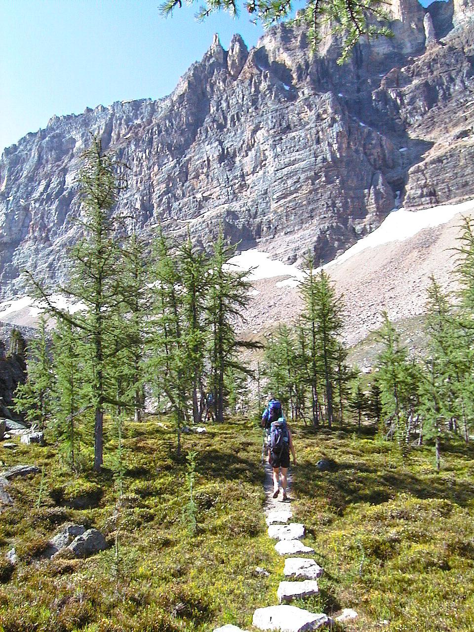 MtYukness 8611 - Mount Yukness